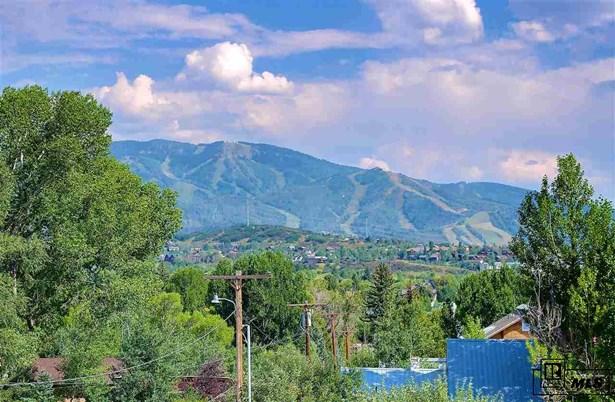 1161 Soda Ridge Way, Steamboat Springs, CO - USA (photo 4)