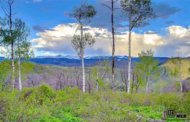 56400 Olive St., Clark, CO - USA (photo 3)