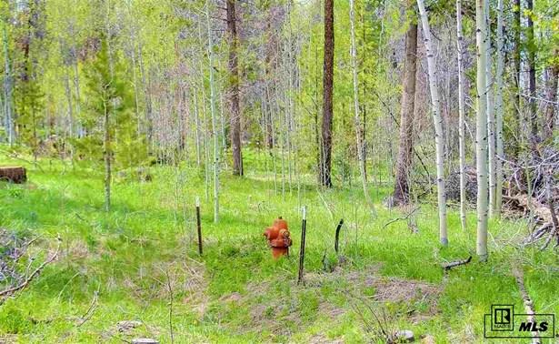 21215 Roan, Oak Creek, CO - USA (photo 3)