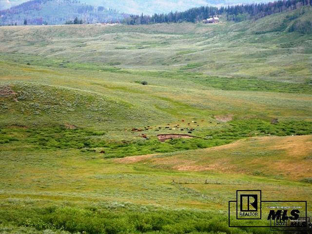 59255 Button Willow Drive, Clark, CO - USA (photo 1)