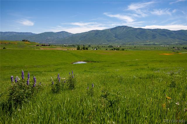 32605 County Road 35, Steamboat Springs, CO - USA (photo 3)