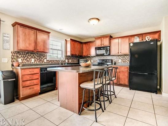206 Springdale, Bloomington, IL - USA (photo 5)