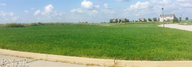 Lot 7 Franklin Heights, Normal, IL - USA (photo 1)