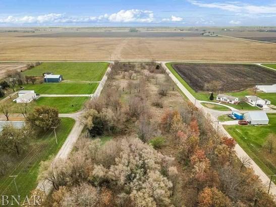 Johnson Subdivision, Panola, IL - USA (photo 4)