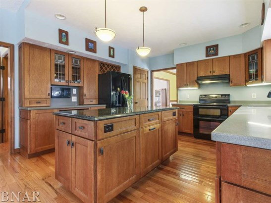 2506 Blarney Stone Lane, Bloomington, IL - USA (photo 4)
