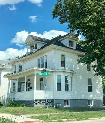 401 E Douglas, Bloomington, IL - USA (photo 4)