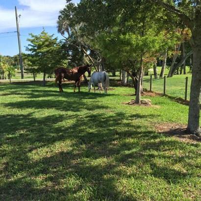Single Family Detached, 2 Story - Merritt Island, FL (photo 5)