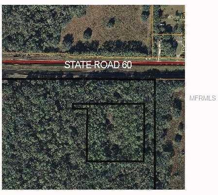 5001 State Road 60, Dover, FL - USA (photo 1)