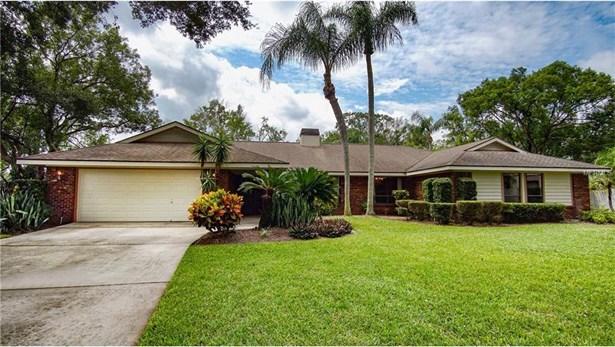 13802 Magdalene Lake Cove, Tampa, FL - USA (photo 1)