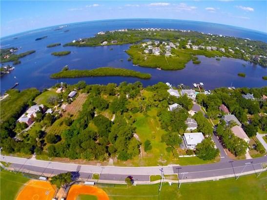 Lot 10 Harbor Palms Court, Palm Harbor, FL - USA (photo 4)