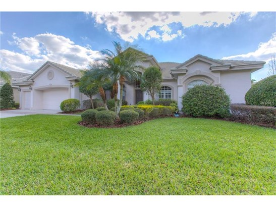 17212 Broadoak Drive, Tampa, FL - USA (photo 1)