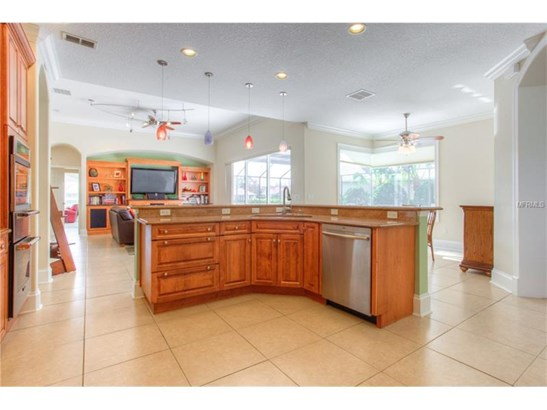 17212 Broadoak Drive, Tampa, FL - USA (photo 5)