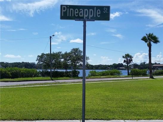 Pineapple Street, Tarpon Springs, FL - USA (photo 3)