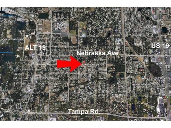 1639 Georgia Avenue, Palm Harbor, FL - USA (photo 2)