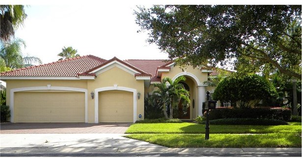 17232 Emerald Chase Drive, Tampa, FL - USA (photo 1)