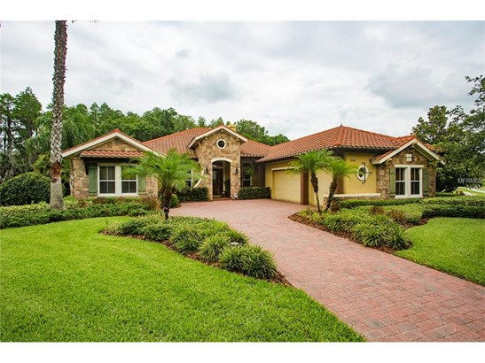 17508 Corsino Drive, Lutz, FL - USA (photo 1)
