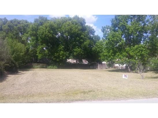 3521 East Lake Drive, Land O Lakes, FL - USA (photo 3)