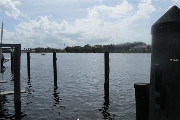 Seddon Cove Way 37, Tampa, FL - USA (photo 4)