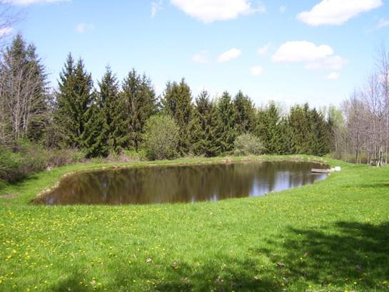 4818 Federal Road, Livonia, NY - USA (photo 3)