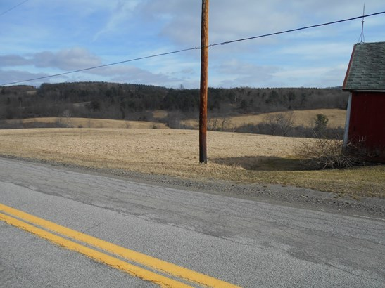 7765 County Route 113, Bath, NY - USA (photo 3)