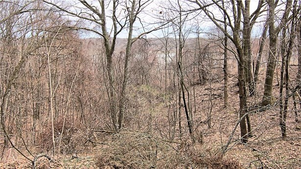 385 Orchard Park Boulevard, Irondequoit, NY - USA (photo 2)