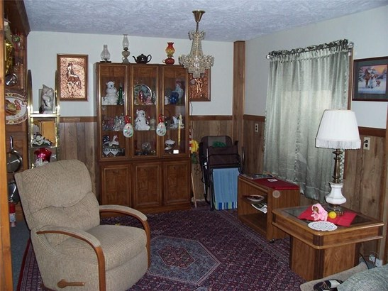 20 Adams Street, Dansville, NY - USA (photo 5)