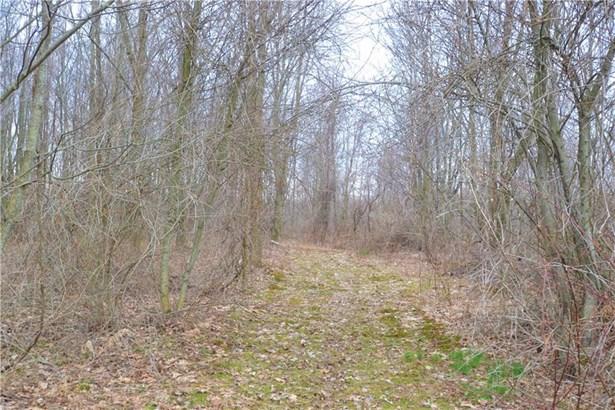 7215 Fisher Road, Ontario, NY - USA (photo 5)