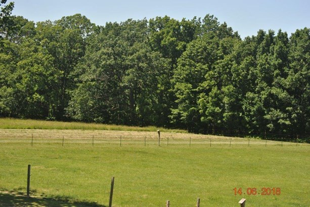 9678 Big Tree Road, Hemlock, NY - USA (photo 4)