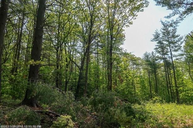 Cross Property - Mount Vernon, ME (photo 4)