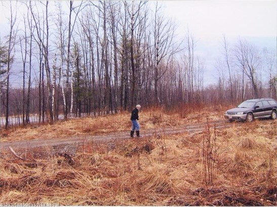 Cross Property - New Sharon, ME (photo 5)