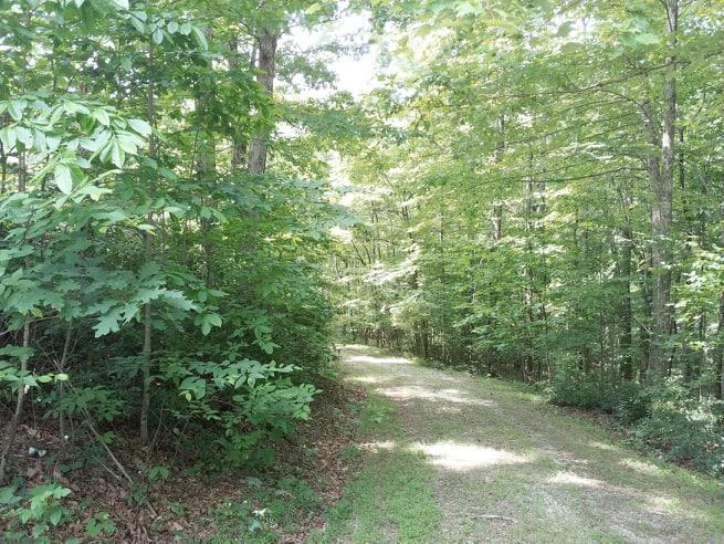 Land (Acreage), Lots/Land/Farm - Ferrum, VA