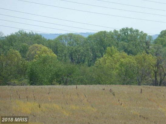 Lot-Land - PERRYVILLE, MD (photo 3)