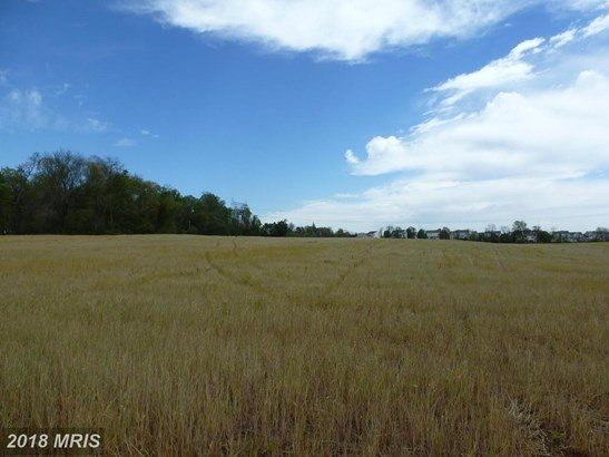 Lot-Land - PERRYVILLE, MD (photo 5)