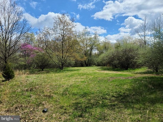 Lots/Land/Farm - GERRARDSTOWN, WV
