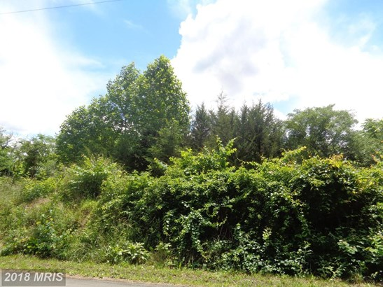 Lot-Land - CASTLETON, VA (photo 4)