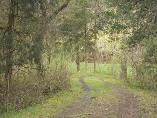 Land (Acreage), Lots/Land/Farm - Buchanan, VA (photo 4)