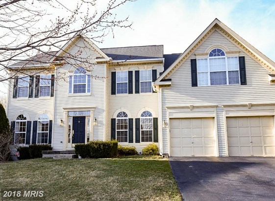 Traditional, Detached - ROUND HILL, VA (photo 1)