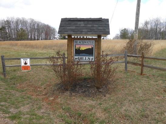 Land (Acreage), Lots/Land/Farm - Glade Hill, VA (photo 1)