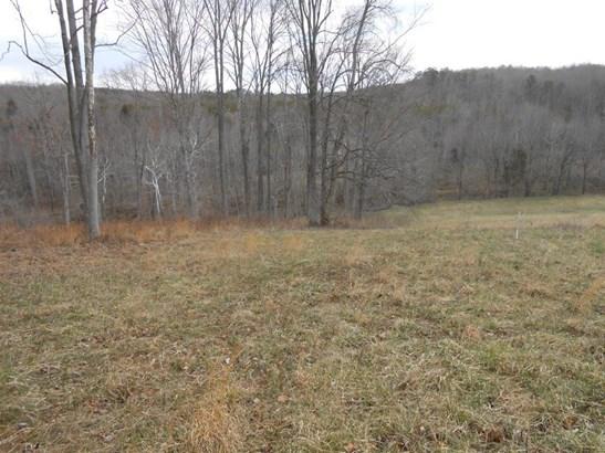 Land (Acreage), Lots/Land/Farm - Glade Hill, VA (photo 3)