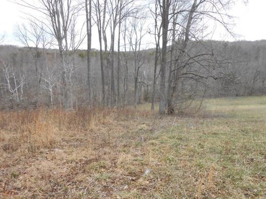 Land (Acreage), Lots/Land/Farm - Glade Hill, VA (photo 4)
