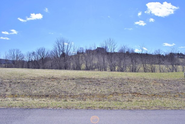 Lots/Land - Riner, VA (photo 2)