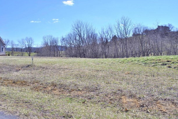 Lots/Land - Riner, VA (photo 4)