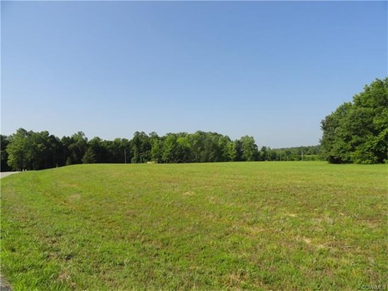Lots/Land - North Dinwiddie, VA (photo 4)