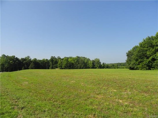 Lots/Land - North Dinwiddie, VA (photo 5)