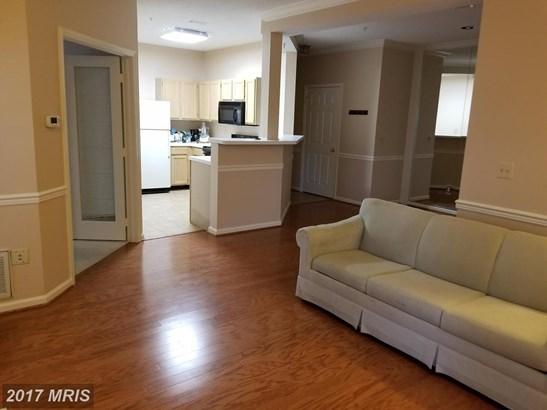 Garden 1-4 Floors, Contemporary - CENTREVILLE, VA (photo 4)