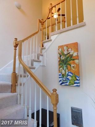 Garden 1-4 Floors, Contemporary - RESTON, VA (photo 2)