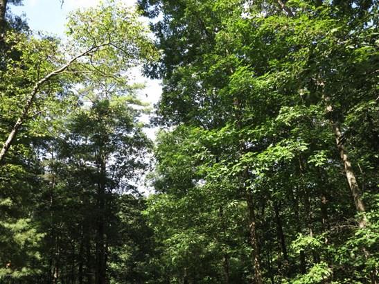 Land - Elliston, VA (photo 1)