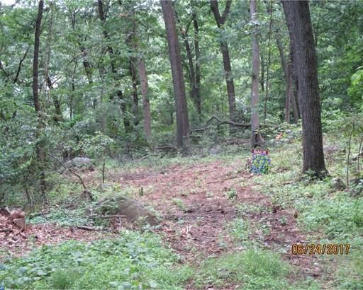 Lot-Land - SPRING MOUNT, PA (photo 2)