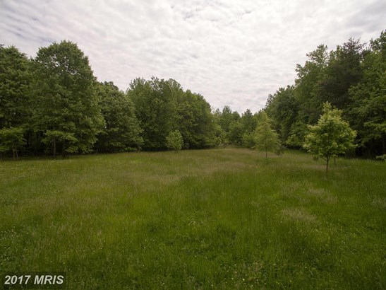 Lot-Land - SHADY SIDE, MD (photo 4)