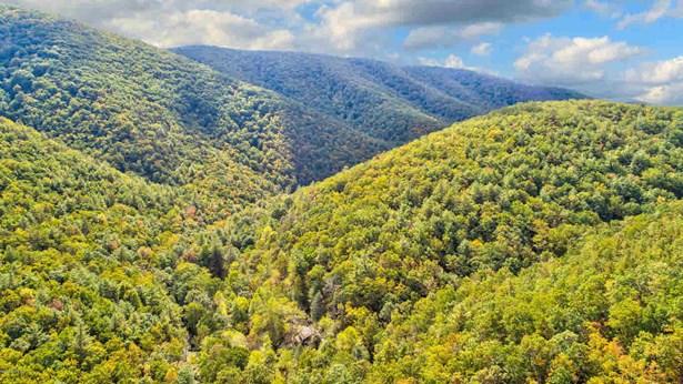 Land - Hiwassee, VA (photo 2)